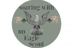 20170502111439_eagle