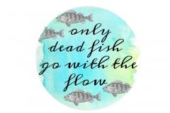 20170502111450_fish