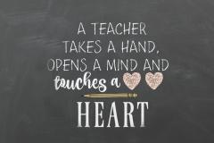 20170502111706_teacher