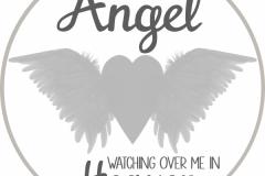 20170502112942_angel
