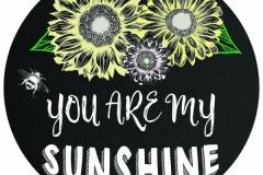 20170502113451_sunshine