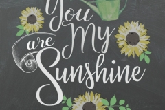 20170503100917_you_are_my_sunshine