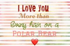 20170531110852_polar